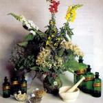 homeopatia1[1]