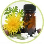 homeopatia2[1]